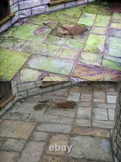 Cleenly Patio Cleaner Mould Algae Moss Killer 25% Stronger Drive Decking Brick